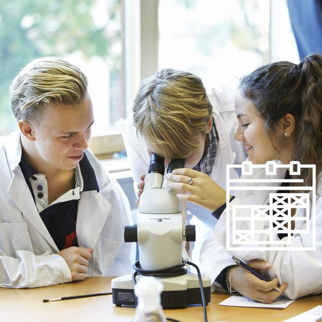 Three students in the laboratory